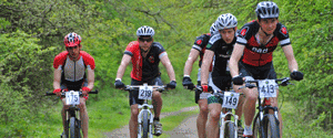 Forest of Dean Wild Boar Chase bike ride