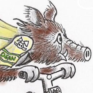 A graphic showing a boar on a bike.