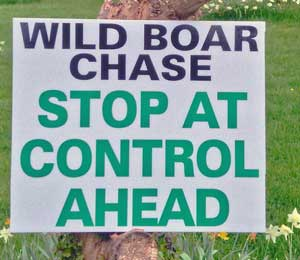 Wild Boar Chase - Control sign