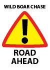 Wild Boar Chase - road ahead